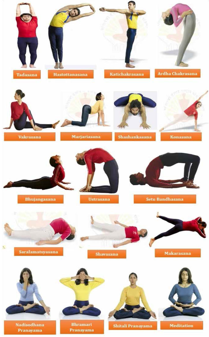 Yoga When Practiced In A Safe And Planned Way It Can Be Very Useful Mode Of Therapy The Management Acute Chronic Back Pain